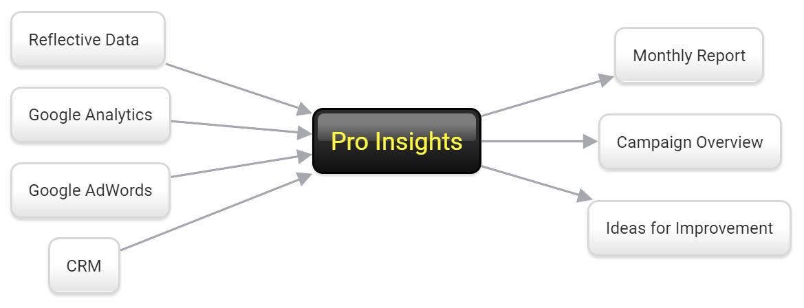 Pro Insights Scheme
